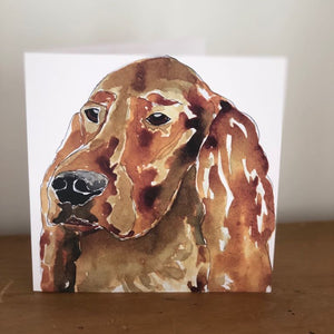 Tilly Irish Setter Card