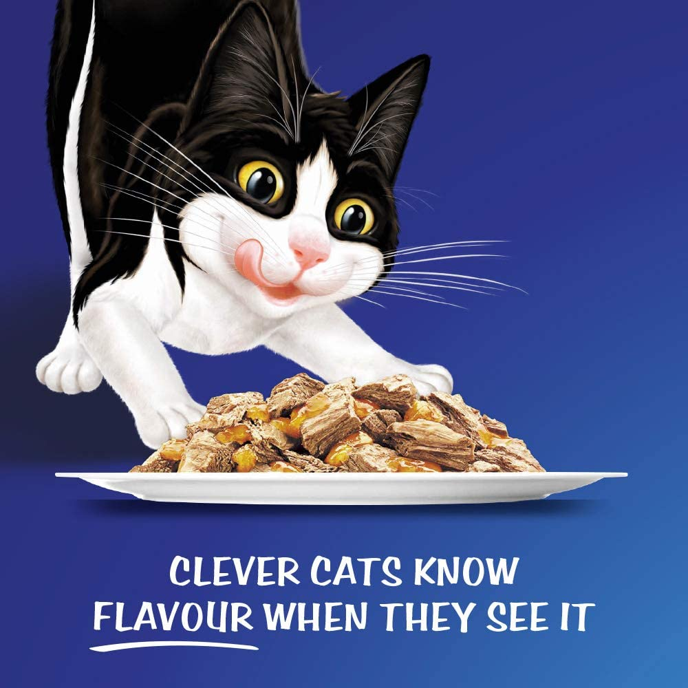 Felix As Good As It Looks -Kitten Menus, 60x85g