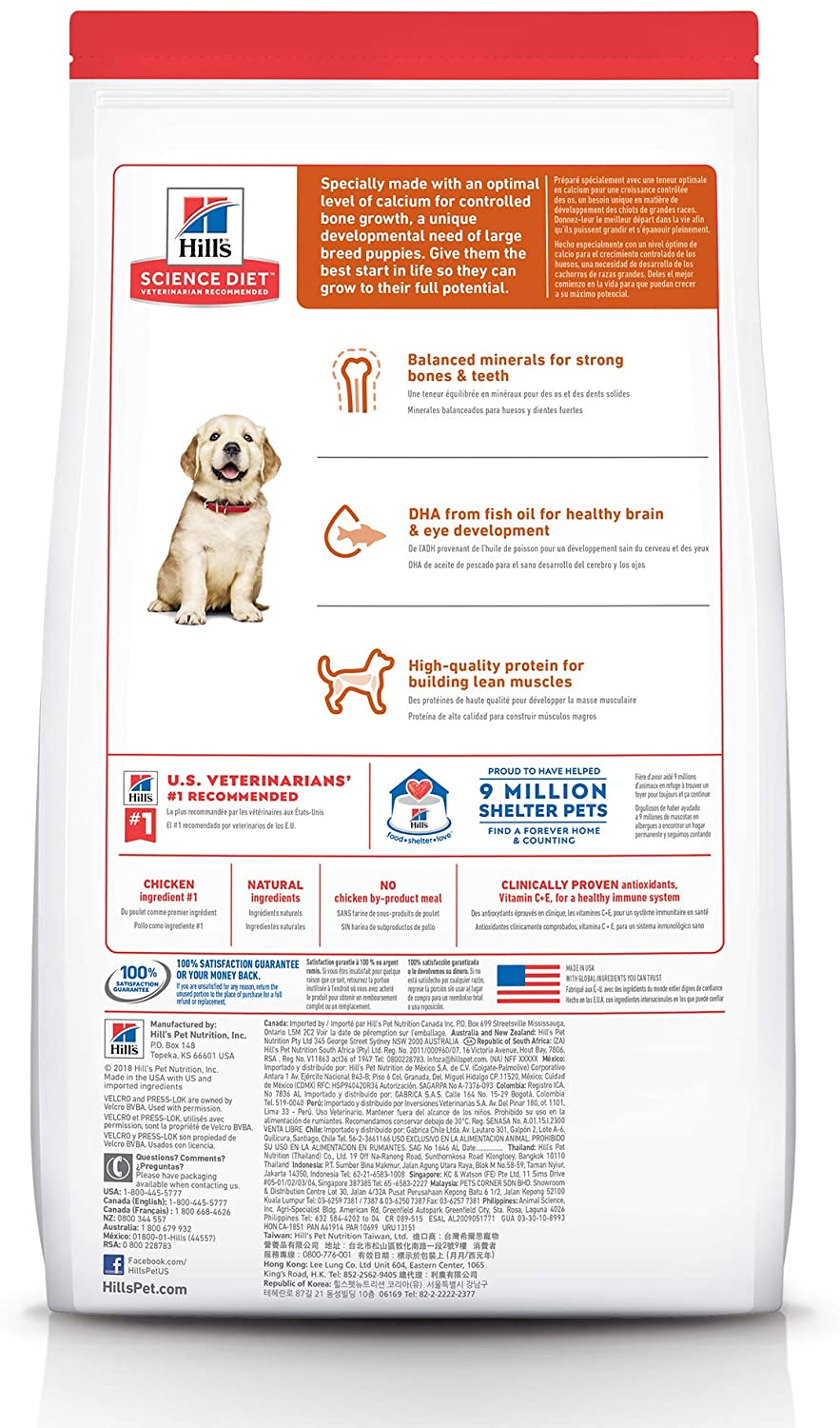 Hill's Science Diet Puppy Large Breed Chicken Meal & Oats Recipe Dry Dog Food 12kg Bag