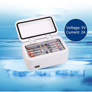Cooler Bag Diabetic Insulin Temperature Mini Refrigerator Ice Box