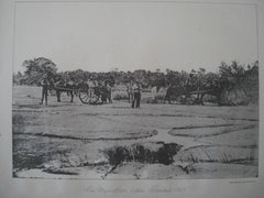 Asphaltum Lake in Trinidad, W. I., 1886. Photogravure