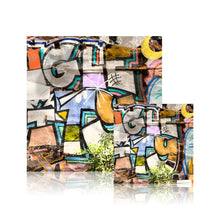 Load image into Gallery viewer, Graffiti (Acrylic Block)