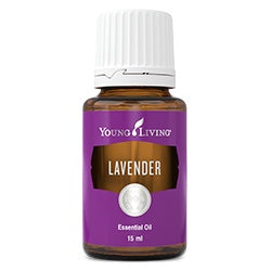 Lively Living Lavender Essential Oil 15ml
