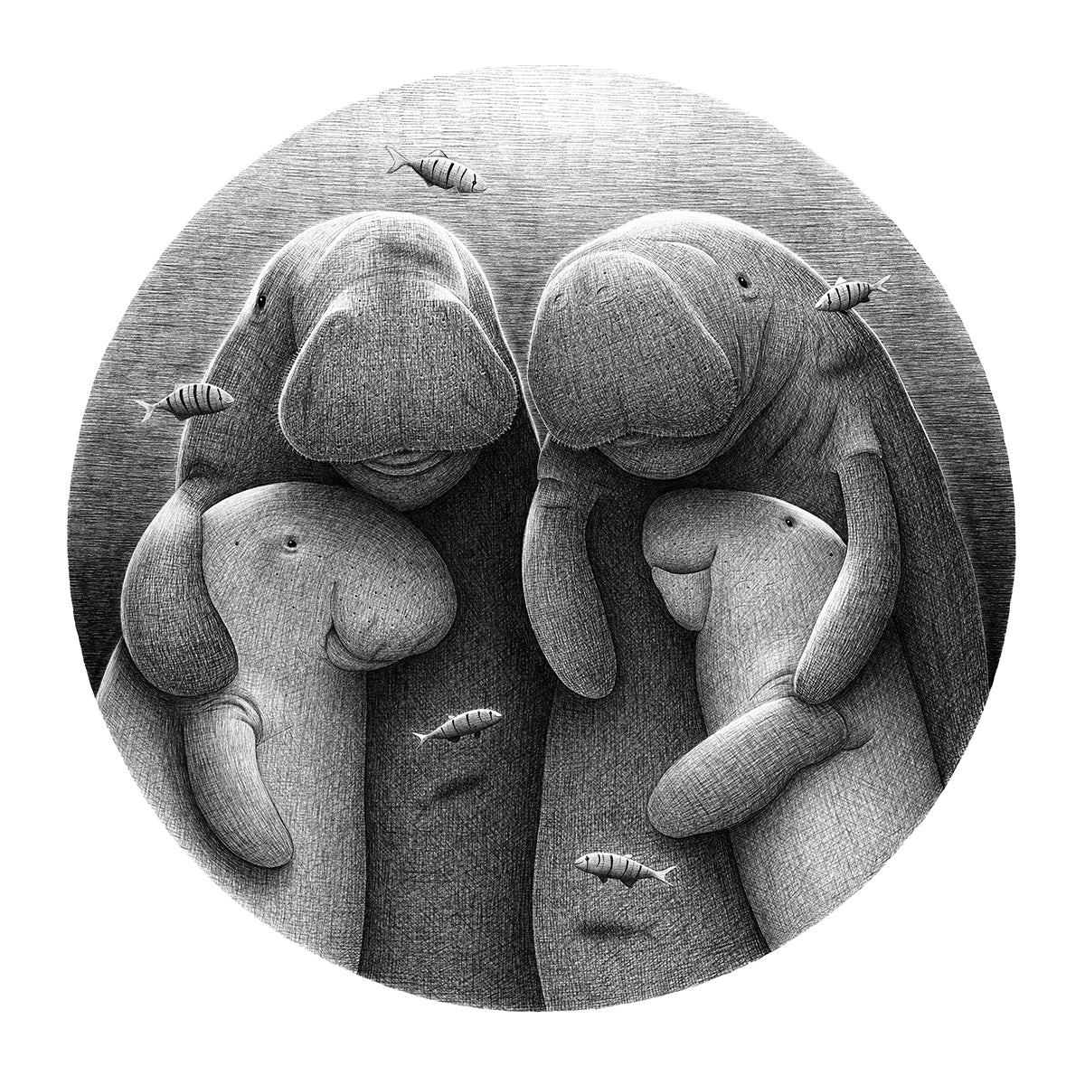 Dugong Family Illustration | Endangered Animals | Lucia Eggenhoffer | Eggenland