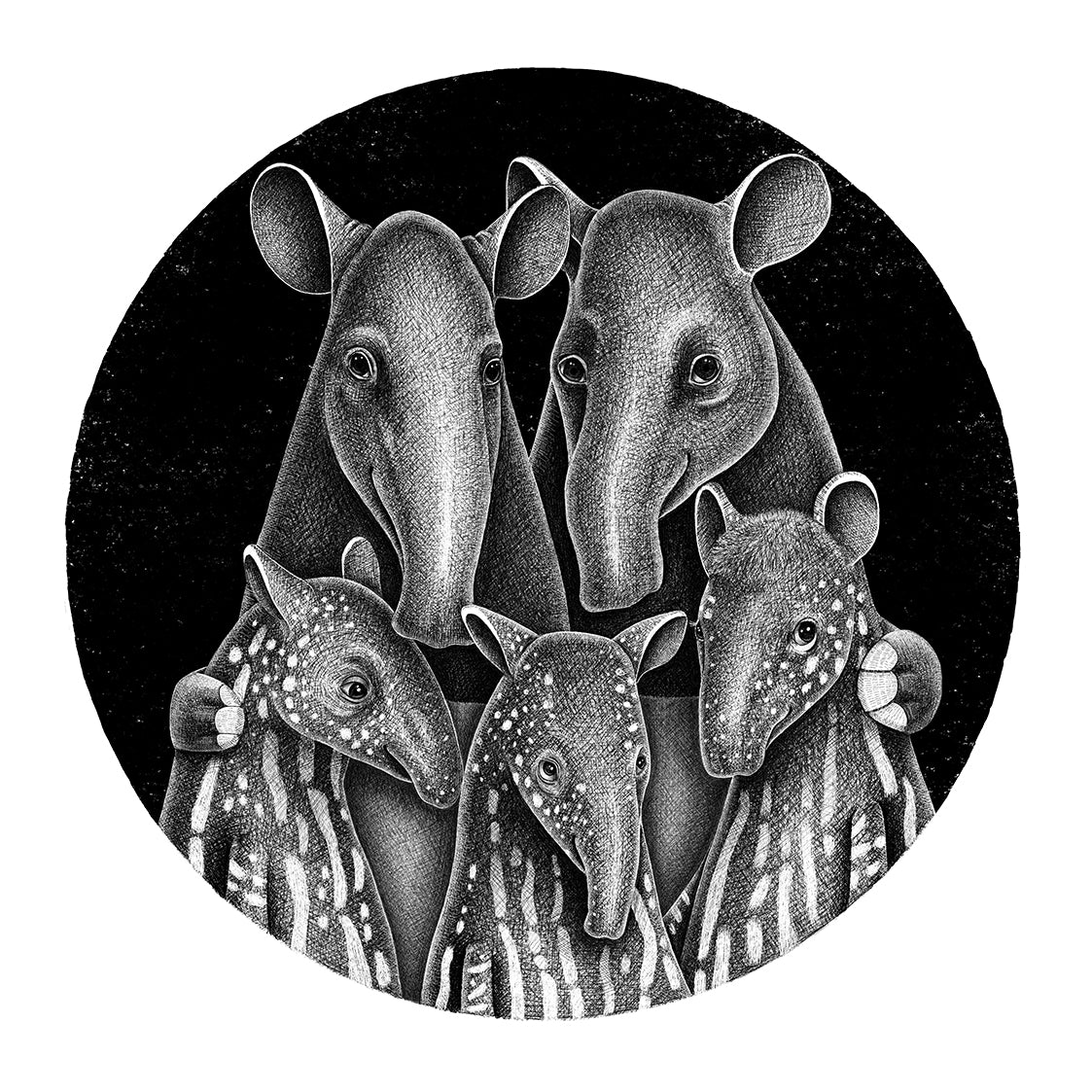 Tapir Family | Black and White Illustration Art Print for Sale | Endangered Animals Collection | Lucia Eggenhoffer