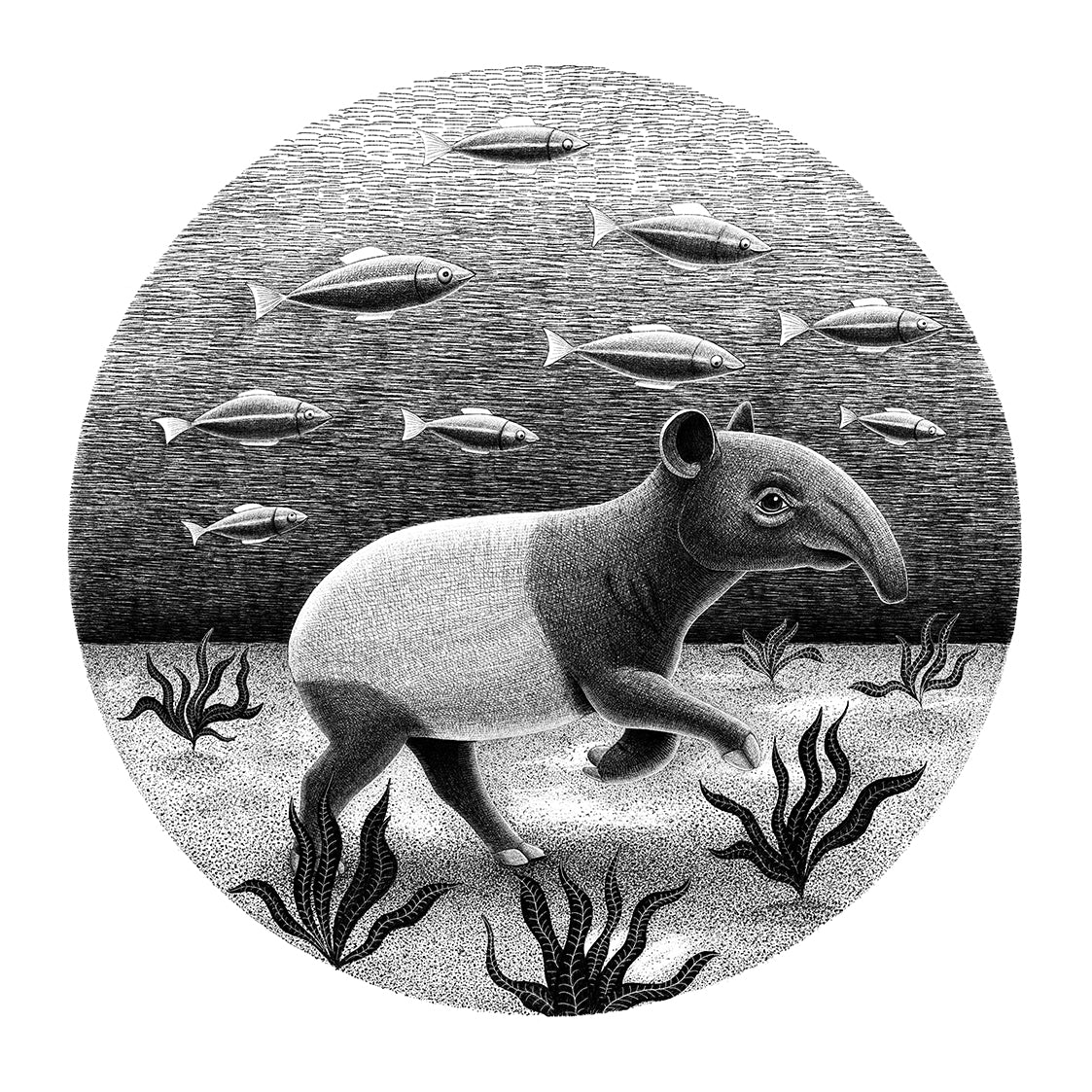 Tapir Underwater | Endangered Animals Collection | Art Print for Sale | Lucia Eggenhoffer | Eggenland