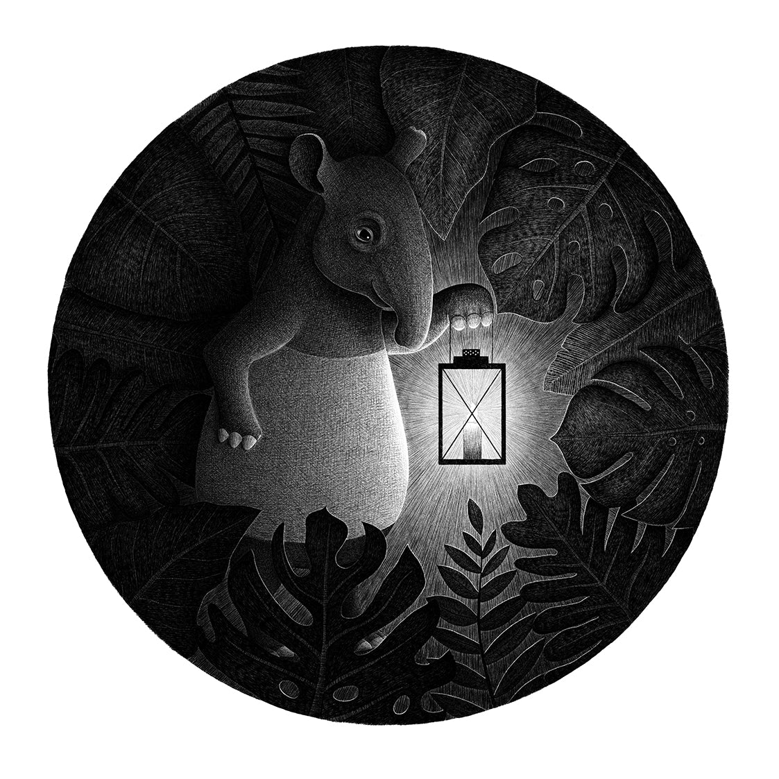 Tapirs are night creatures | Black and White Illustration Art Prints for Sale | Lucia Eggenhoffer