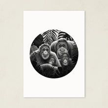 Load image into Gallery viewer, Orangutan Family | Art Print