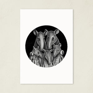 Tapir Family | Black and White Illustration | Art Print-art print-A4-Eggenland