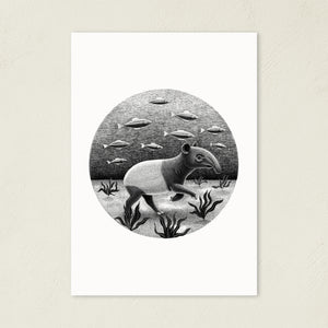 Tapirs Can Walk Underwater | Black and White Illustration | Art Print-art print-A4-Eggenland