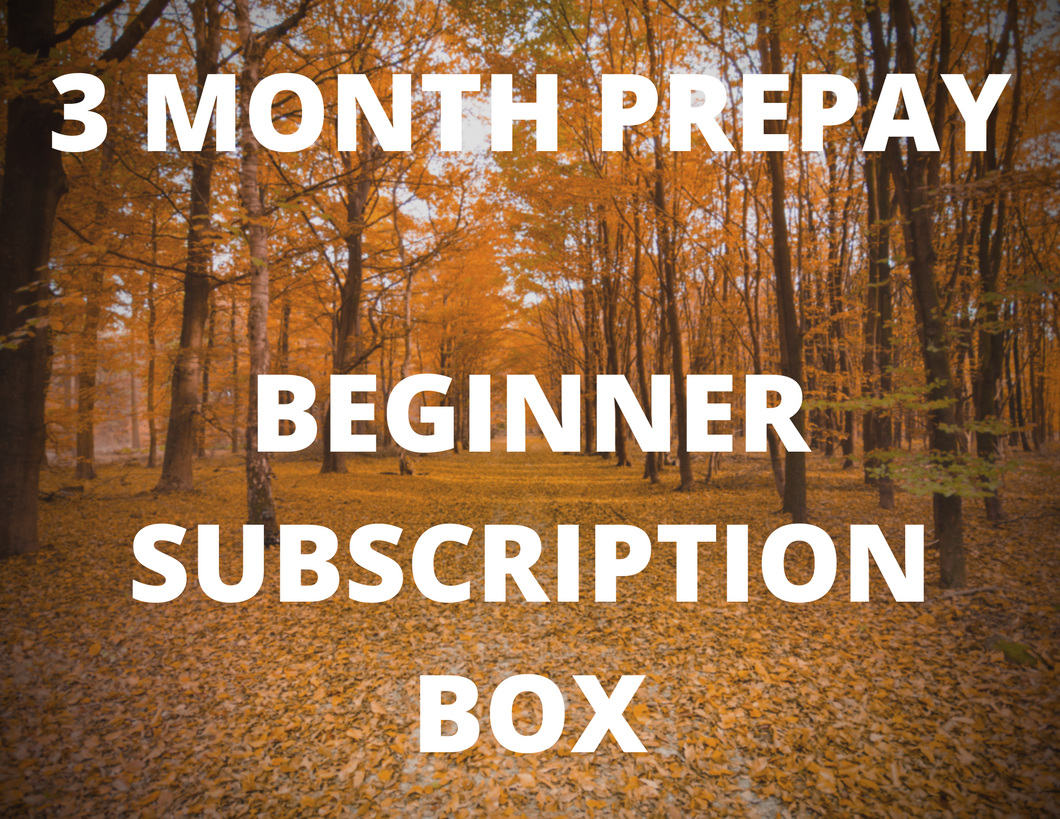 3 Month Prepay - Beginner Subscription Box