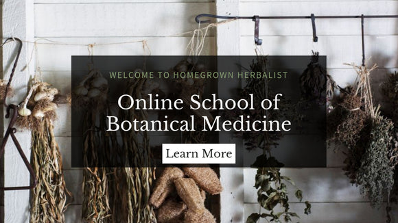 herbalism classes online school learn at your own pace