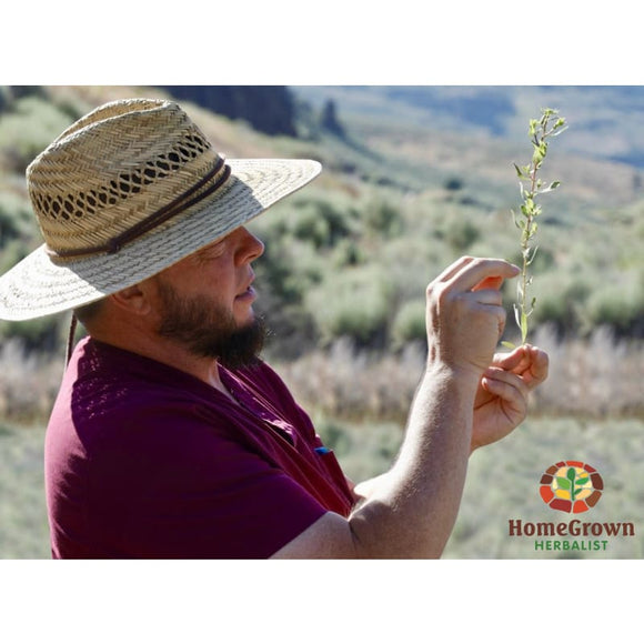 Buhl ID July 6th 2019 - Desert and Mountain Plant Walk - Workshops/Seminars HomeGrown Herbalist