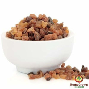Myrrh (Commiphora myrrha) - simple HomeGrown Herbalist herb Myrrh simple single