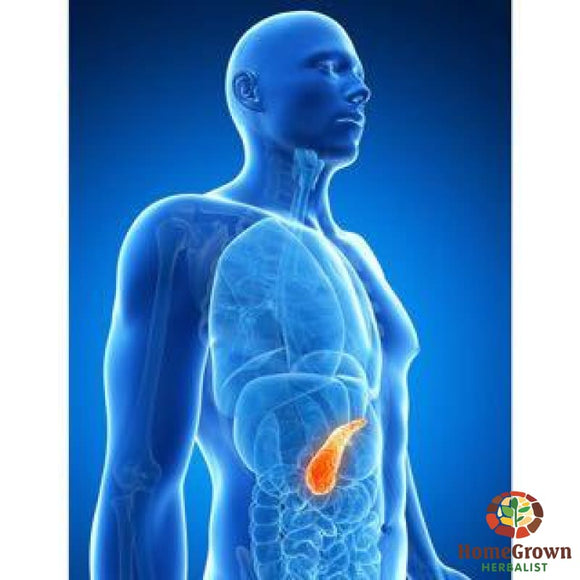 Pancreas - Blood Sugar - Herb Formula Homegrown Herbalist Blood Digestive Endocrine Formulas