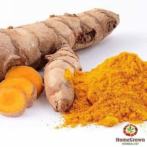 Turmeric (Curcuma longa) - simple HomeGrown Herbalist herb simple single Turmeric