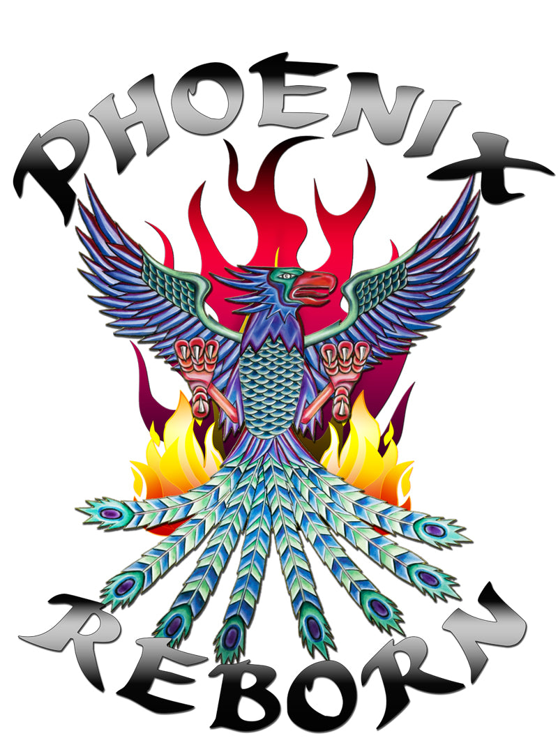 Phoenix Reborn Martial Arts Youth Program