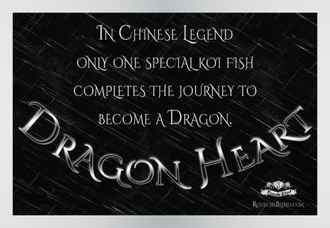 In Chinese legend only one special koi fish completes the journey to become a dragon. — Dragon Heart