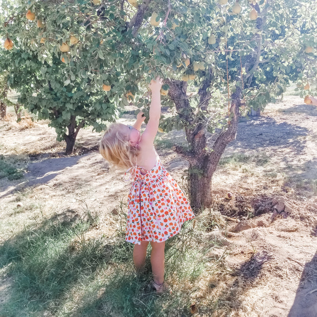 Apple Orchard Dress For Girls