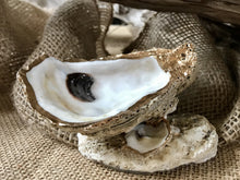 Load image into Gallery viewer, Oyster Shell Jewelry Dish