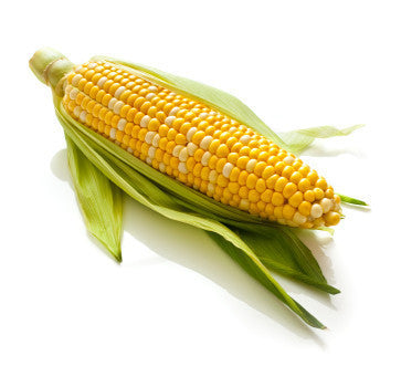 Corn, Yellow, Fresh