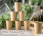 Kraft Paper Cups, Boho Wedding, Woodland Birthday, Baby Shower, Eco Friendly Plates,