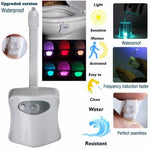 Smart Bathroom Toilet Nightlight LED Body Motion Activated On/Off Seat Sensor Lamp 8 Color