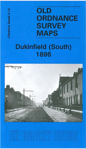 Dukinfield South 1896 - Cheshire Sheet 3.13