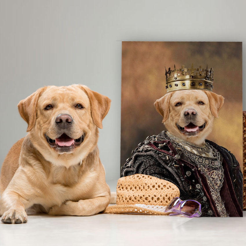 Medieval King - Personalized Pet Portrait Poster Wall Art Custom Canvas Gift for Dog Cat Lovers
