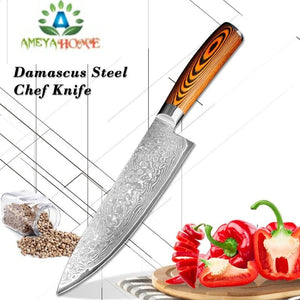 Professional Damascus Chef Knife - Ameya Home