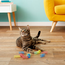 Load image into Gallery viewer, Ethical Pet Colorful Springs Wide Cat Toy