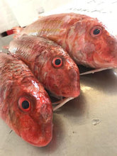 Load image into Gallery viewer, Red Mullet