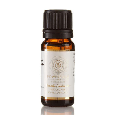 Essential Oil - Frankincense Bundle