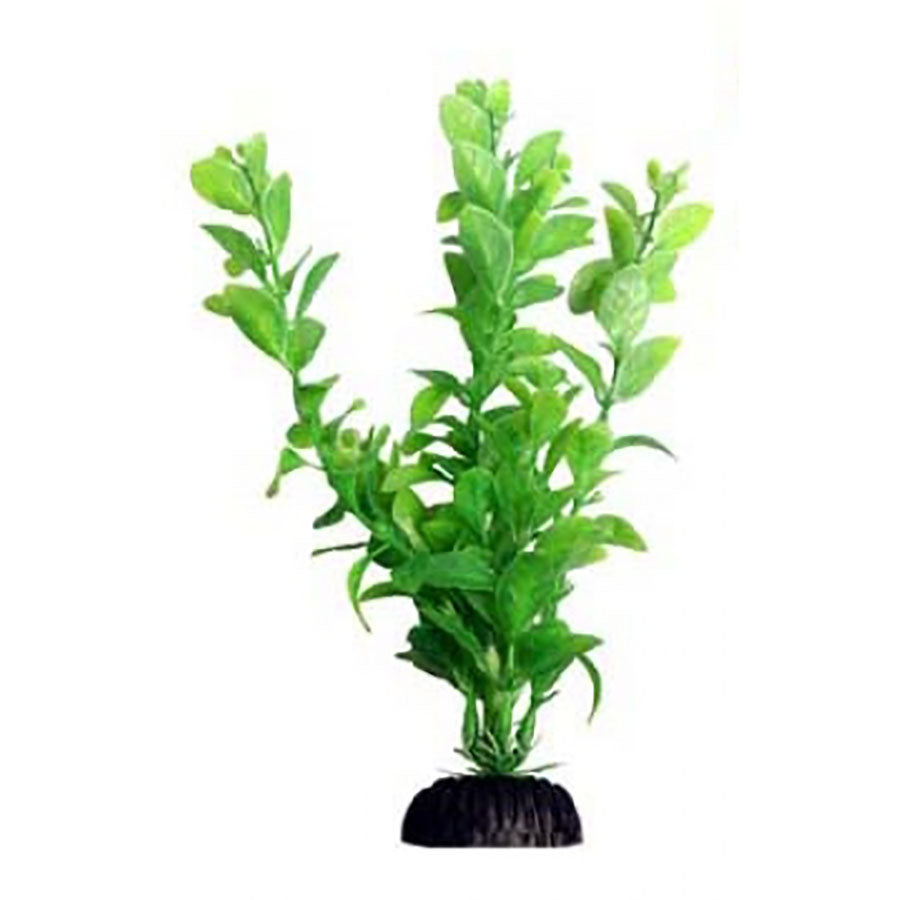 Aqua One Ecoscape Medium Poly Hygro Green 20cm - Artificial Plant