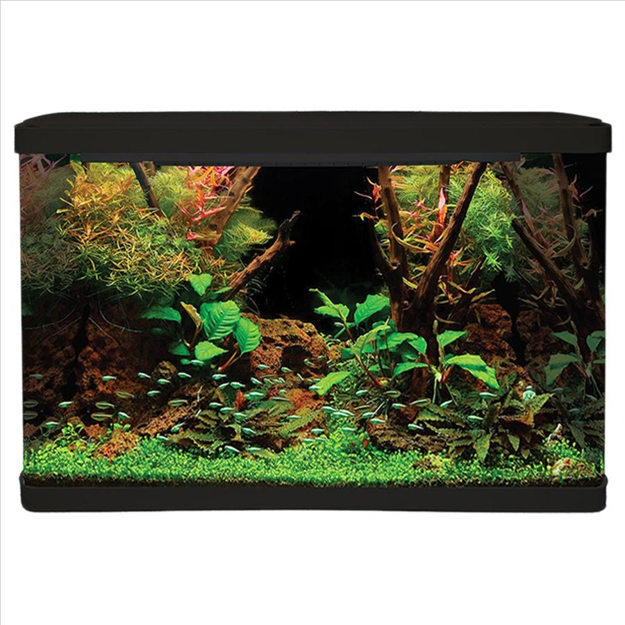 Aqua One Lifestyle 127 Aquarium Black - In Store Pick Up