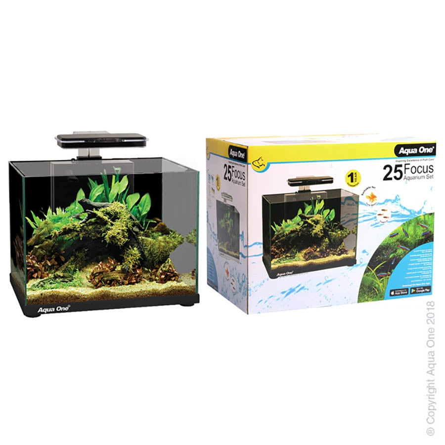 Aqua One Focus 25 Black Aquarium with Light and Filter - In Store Pickup only