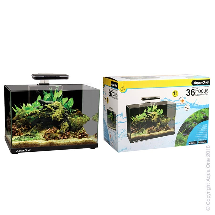 Aqua One Focus 36 Black Aquarium with Light and Filter - In Store Pickup only