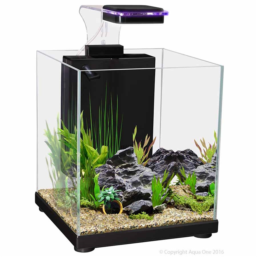 Aqua One Betta Sanctuary Aquarium Black - 10l - In Store Pickup only