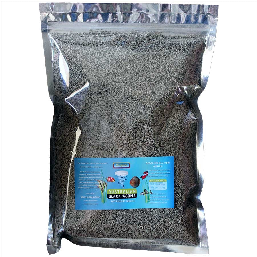 Australian Black Worms 200g Loose - Freeze Dried