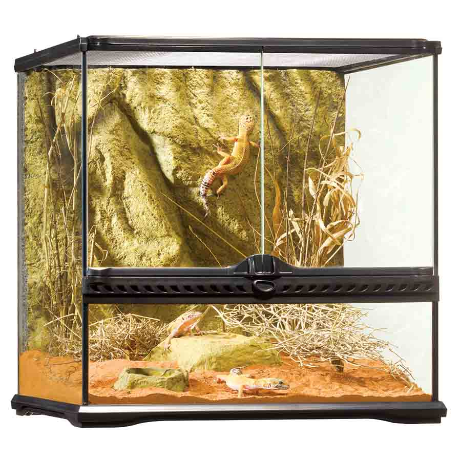 Exo Terra All Glass Small Wide Terrarium - 45 x 45 x 45cm - PT2605