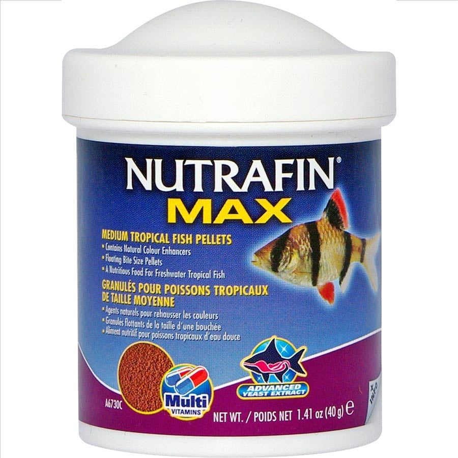 Nutrafin Max Medium Tropical Fish Pellets 40g Floating