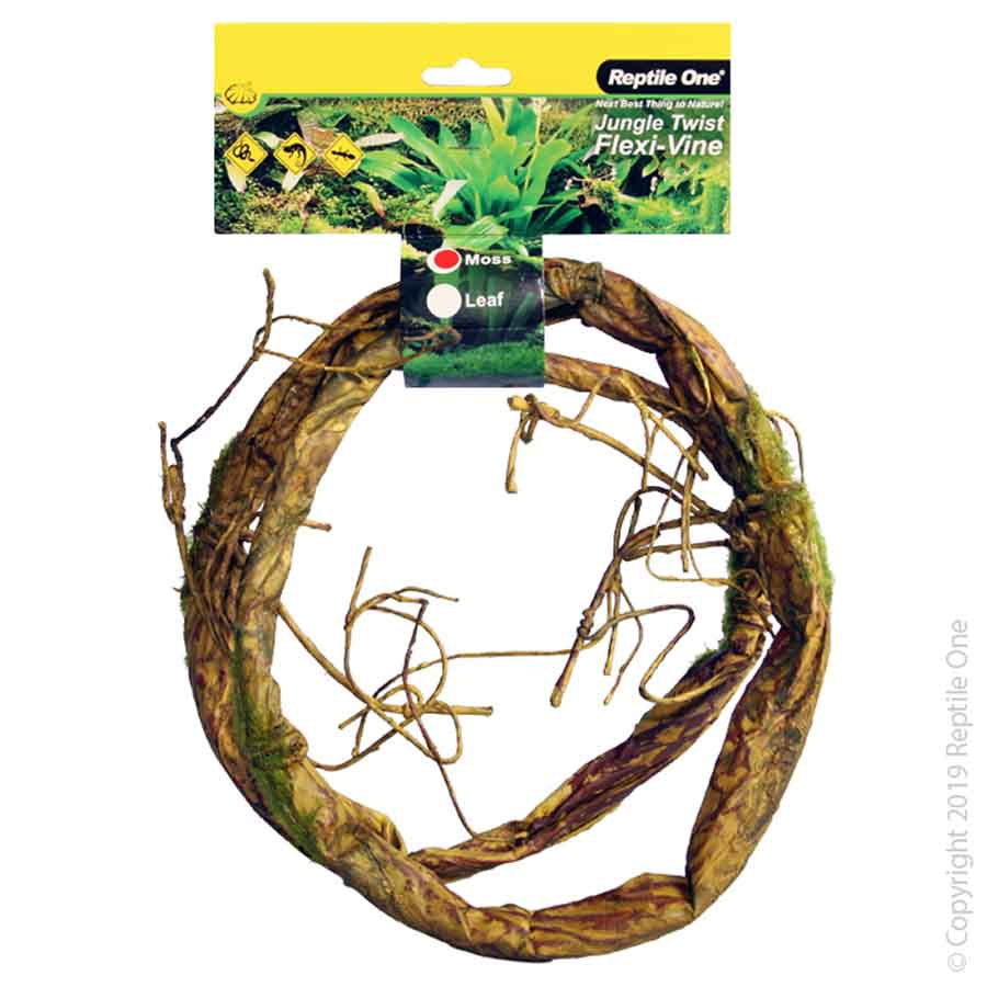 Reptile One Plant Reptile Vine Jungle Twist Moss 1.5M