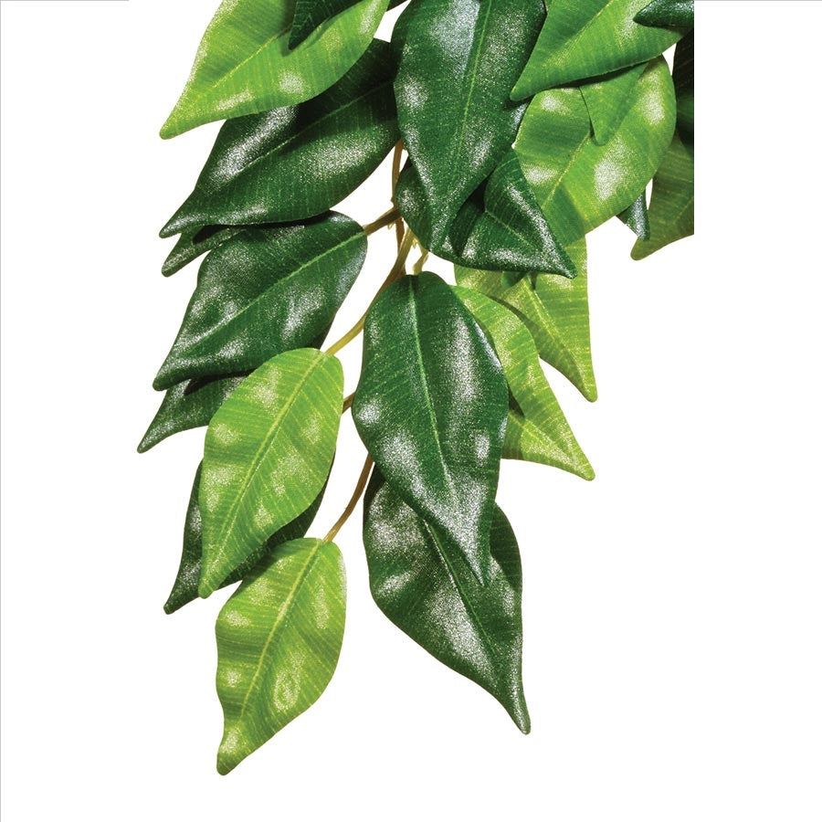 Exo Terra Forest Plant - Ficus - Small Artificial Plant
