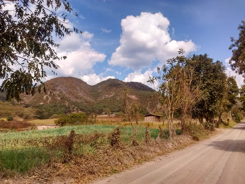 View of the mountains leaving Mascota