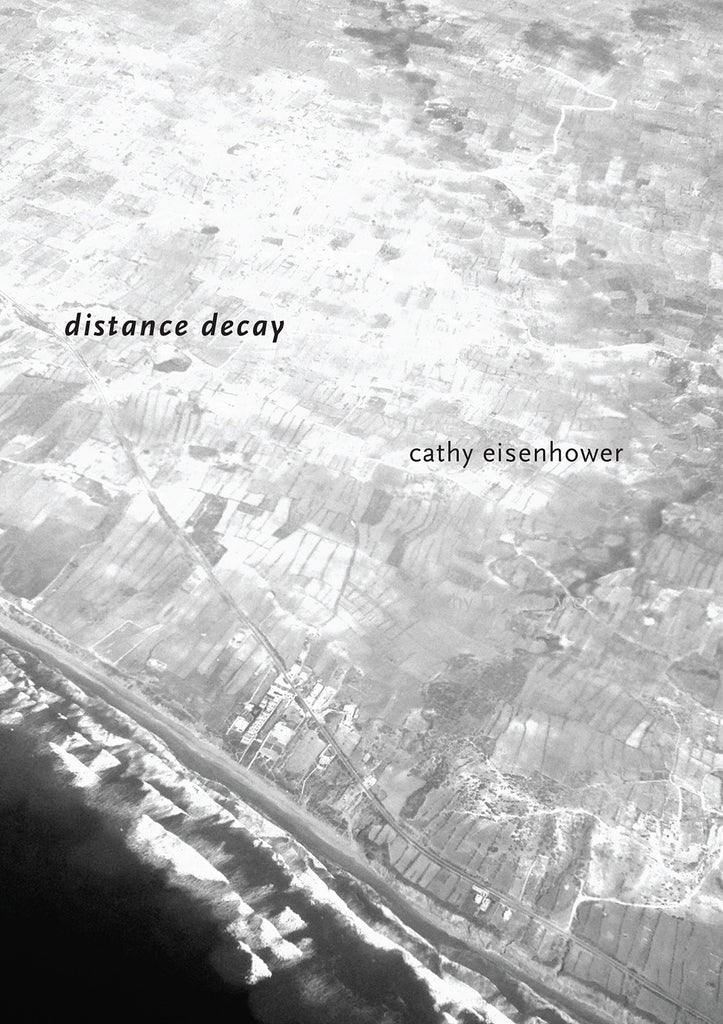 DISTANCE DECAY by Cathy Eisenhower