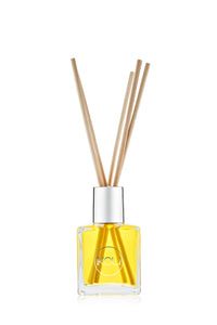 IKOU Mini Diffuser Reed De Stress