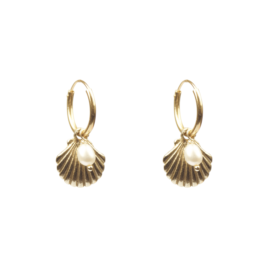 A LA Shell with freshwater pearl earings