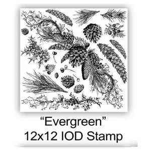 "IOD STAMP ""EVERGREEN"" 12""X12""-Limited Edition"