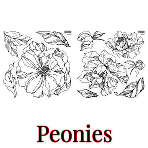 "IOD STAMP ""PEONIES"" (2 SHEETS) 12""X12""---PRE-ORDER ONLY---SHIPPING END OF MAY"