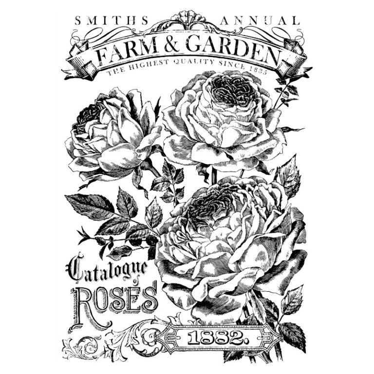 IOD TRANSFER CATALOGUE OF ROSES  24